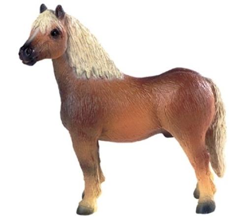 pferde nintendo spiele